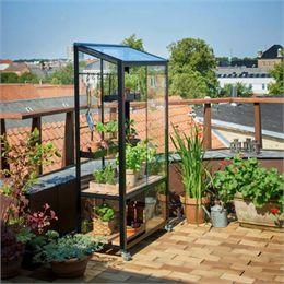 Juliana drivhus - City Greenhouse